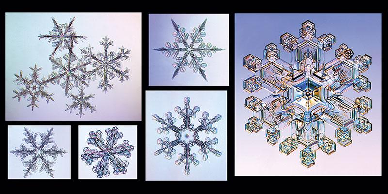 Los secretos de la nieve – Parte II