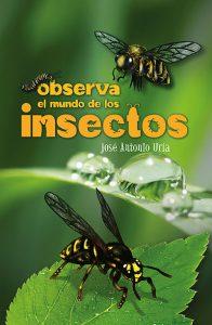 Observa el mundo de los insectos
