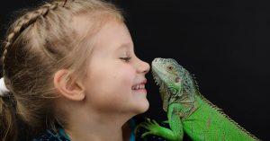 reptiles facebook