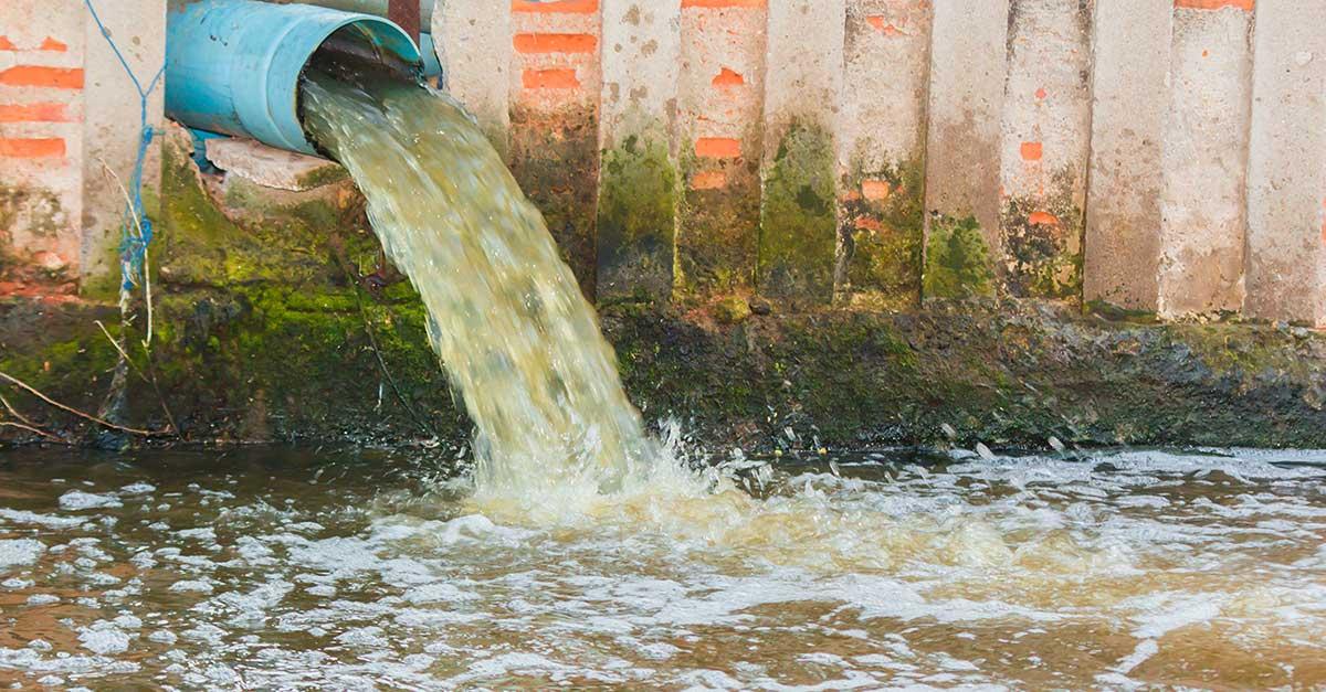 Tratamiento de aguas residuales - Historia de la Vida