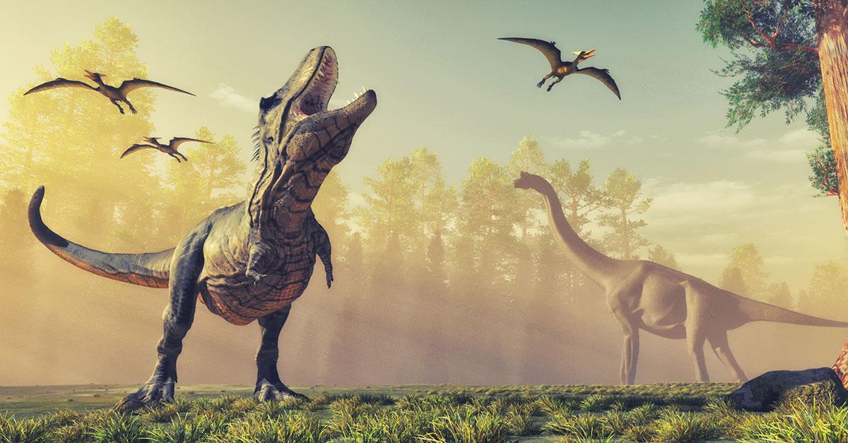 Tejidos Blandos En Huesos De Dinosaurios Historia De La Vida Hoy, en animales salvajes, hablaremos del fascinante mundo, que envuelve a los descubrimientos fósiles, de algunos de los dinosaurios más increíbles. tejidos blandos en huesos de