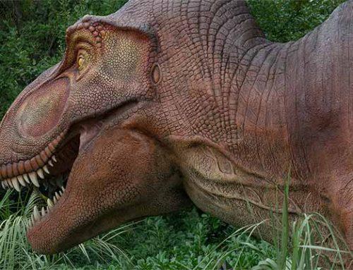 ¿Los dinosaurios eran herbívoros?