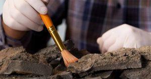Excavando: hallazgos arqueológicos que hablan