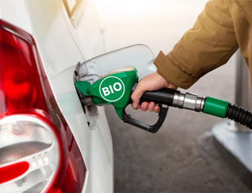 Biodiesel: sustituto del petróleo