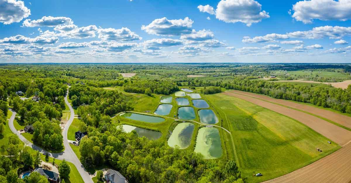 Purificación del agua en la naturaleza